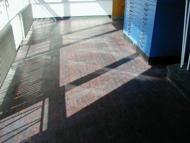 Steingymnasium Linoleumgrundreinigung